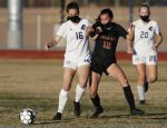 Lady Firebirds tame the Tigers at home, 11-0