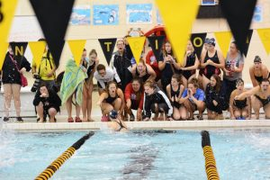 Girls Swim & Dive 2016:  It was a GREAT season!