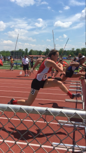 Amberly over hurdle