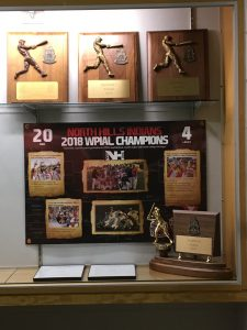 Baseball Trophy Case