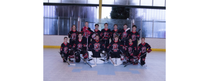 nh inline high school team