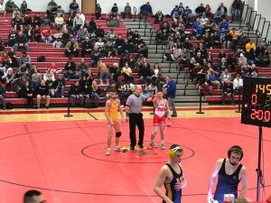 Wrestling- Allegheny County Tournament