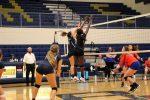 Creek Volleyball Hosts Wade Hampton on Thursday for Senior Night