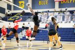 Creek Volleyball Hosts Tri-Match on Tuesday, Oct. 20th