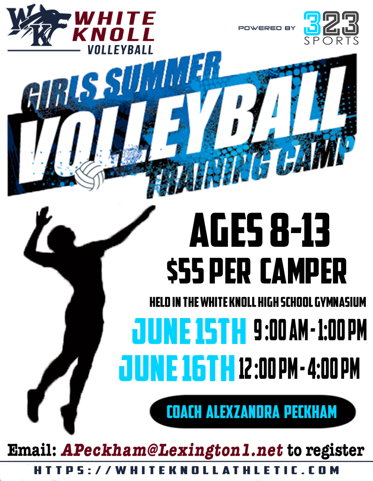 Volleyball Camp Information