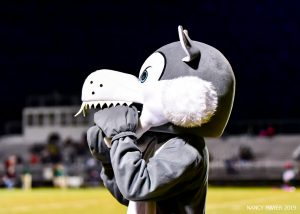 Photos – Football vs Spring Valley