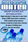 Begin Good Hydration Habits Now