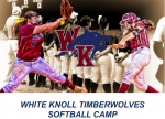 WK Softball Camp
