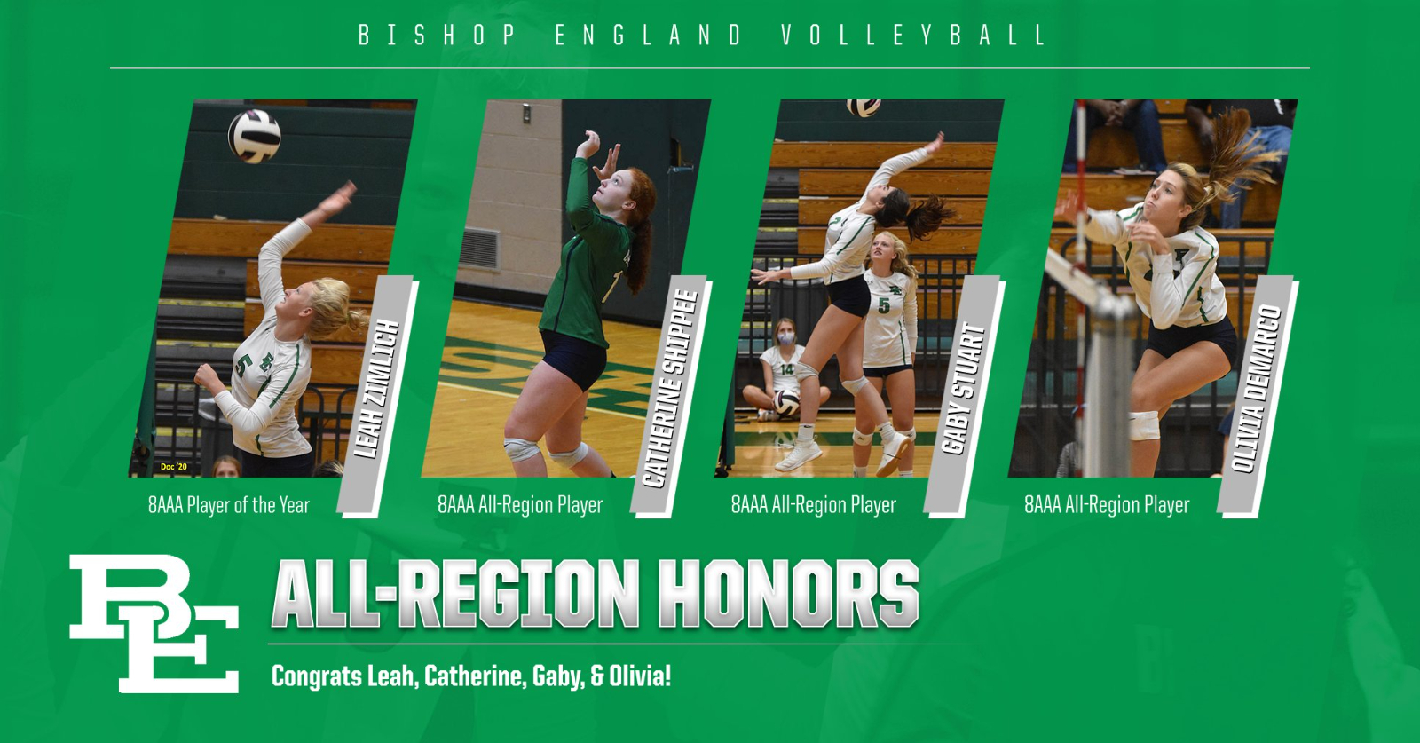 Volleyball All-Region, All-State, & All-Star Team