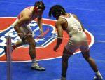 Glynn wrestler wins state championship