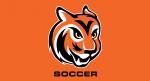 valley soccer tiger head logo