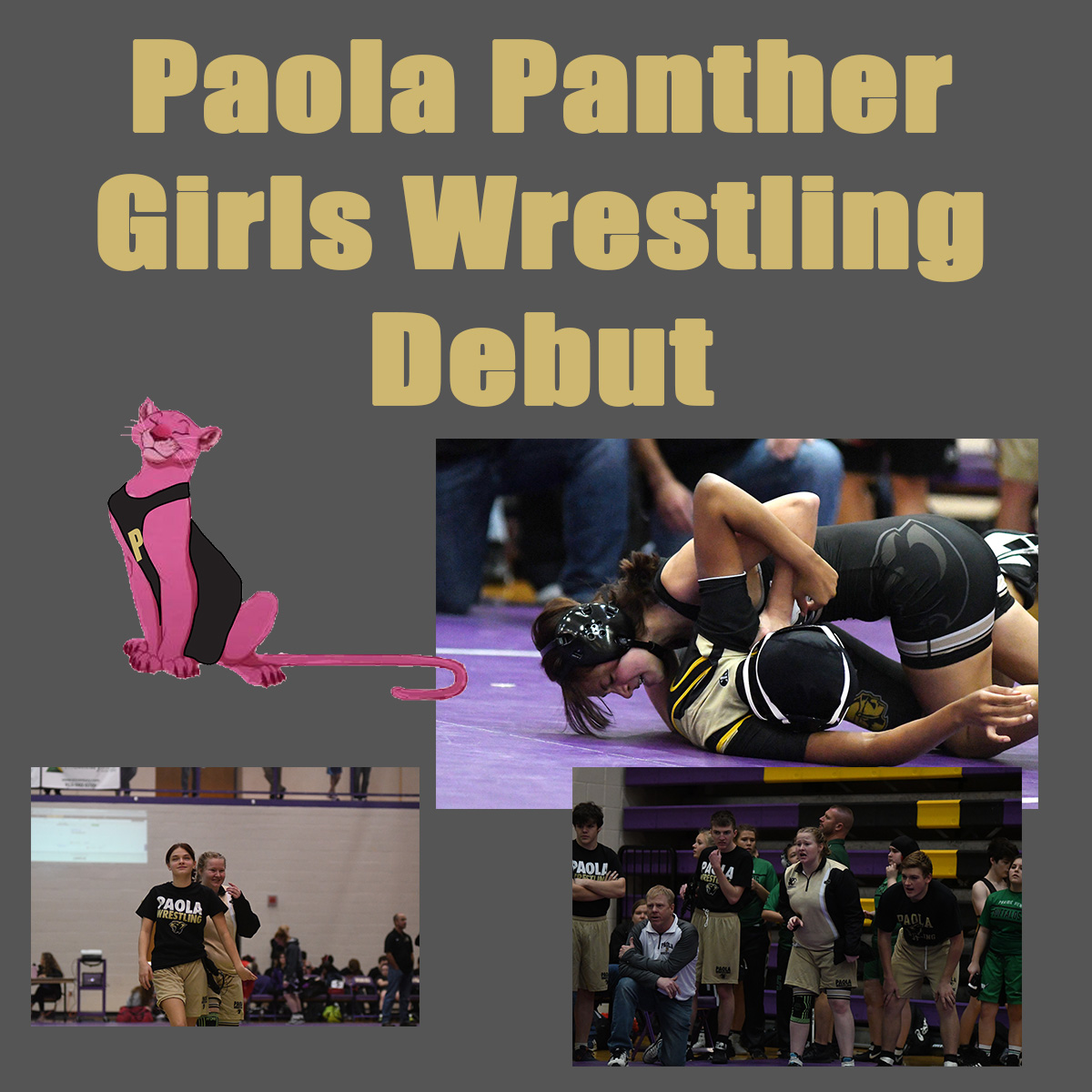 Panther Girls Wrestling