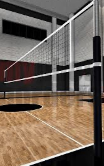 Want to Play Volleyball?