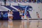 Girls Basketball Spring Break Clinic