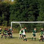 Hornets Victorious Over the Lions of Lawrence School