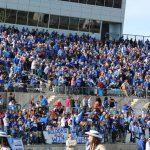 Wildcat Football Season Tickets Go On Sale July 30th