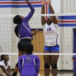Tem-Cat Volleyball Falls To University