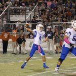 No slowing down: No. 6-ranked Wildcats overpower Hippos