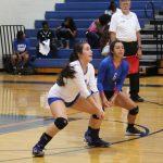 Tem-Cat Volleyball camp registration underway