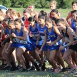 Brown leads JV Girls Cross Country at Temple Invitational
