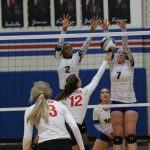 Lady Tigers top Tem-Cats in four