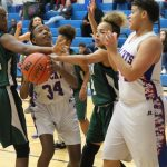 Tem-Cat freshman fall to Ellison