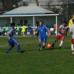 Wildcat Soccer set to host Kickoff Showcase