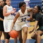 JV girls roll past Ellison 54-25