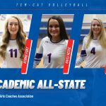 Three Tem-Cats named TGCA Academic All-State