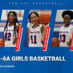 Five Tem-Cats earn Academic All-District