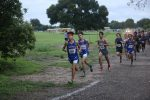 Wildcat Cross Country at the Pro-Fit Invitational