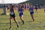 Tem-Cat Cross Country results from the Ellison Invitational
