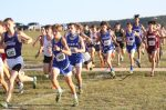 Wildcat Cross Country results from the Ellison Invitational
