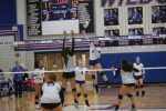 Temple drops 12-6A match to Killeen Shoemaker in straight sets