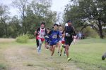 Wildcat Cross Country at the District Meet