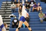 Tem-Cat Volleyball vs. Belton - Games 3 and 4