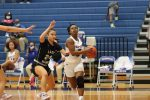 Tem-Cats fall to Hendrickson in home opener
