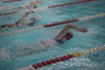 Lady Wildcat swimming at Belton Tri-Meet