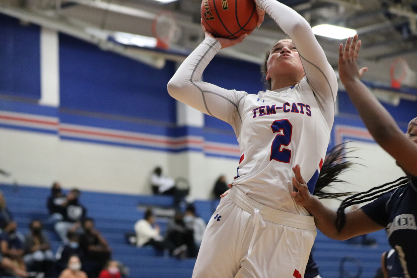 Hall highlights Tem-Cats' 12-6A honors