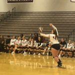 Volleyball vs Herriman