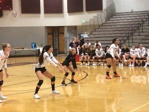 Volleyball vs Herriman