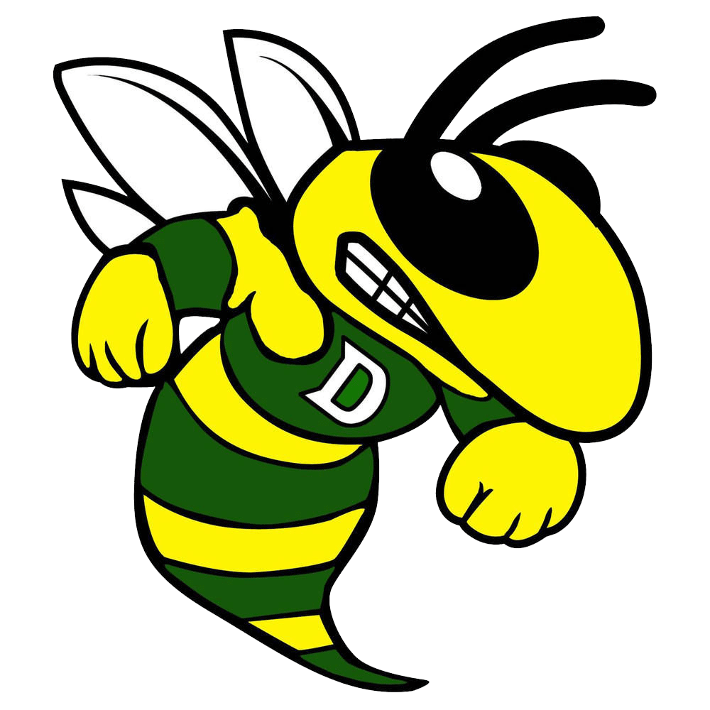 Damascus Team Home Damascus Swarmin Hornets Sports