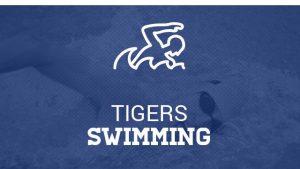 Swimming and Diving Seniors