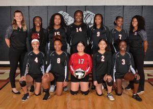 Junior Varsity Volleyball Team Picture
