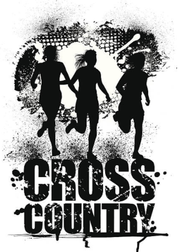 BOYS & GIRLS VARSITY CROSS COUNTRY CALL OUT MEETING MAY 6th. MEET IN ROOM G113