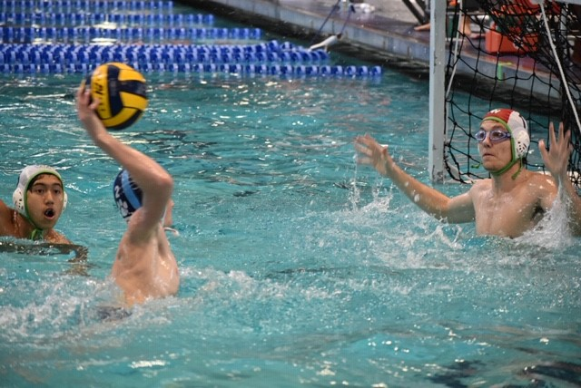 FHSAA Boys Water Polo Regional Finals @ Rosen Aquatic Center Tomorrow (Saturday) at 2:45.  PAINT THE HOUSE DP BLUE!!! Purchase tickets on Go Fan, https://gofan.co/app/events/297061?schoolId=FL627