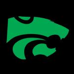The Wildcat Spirit Store Moves Online
