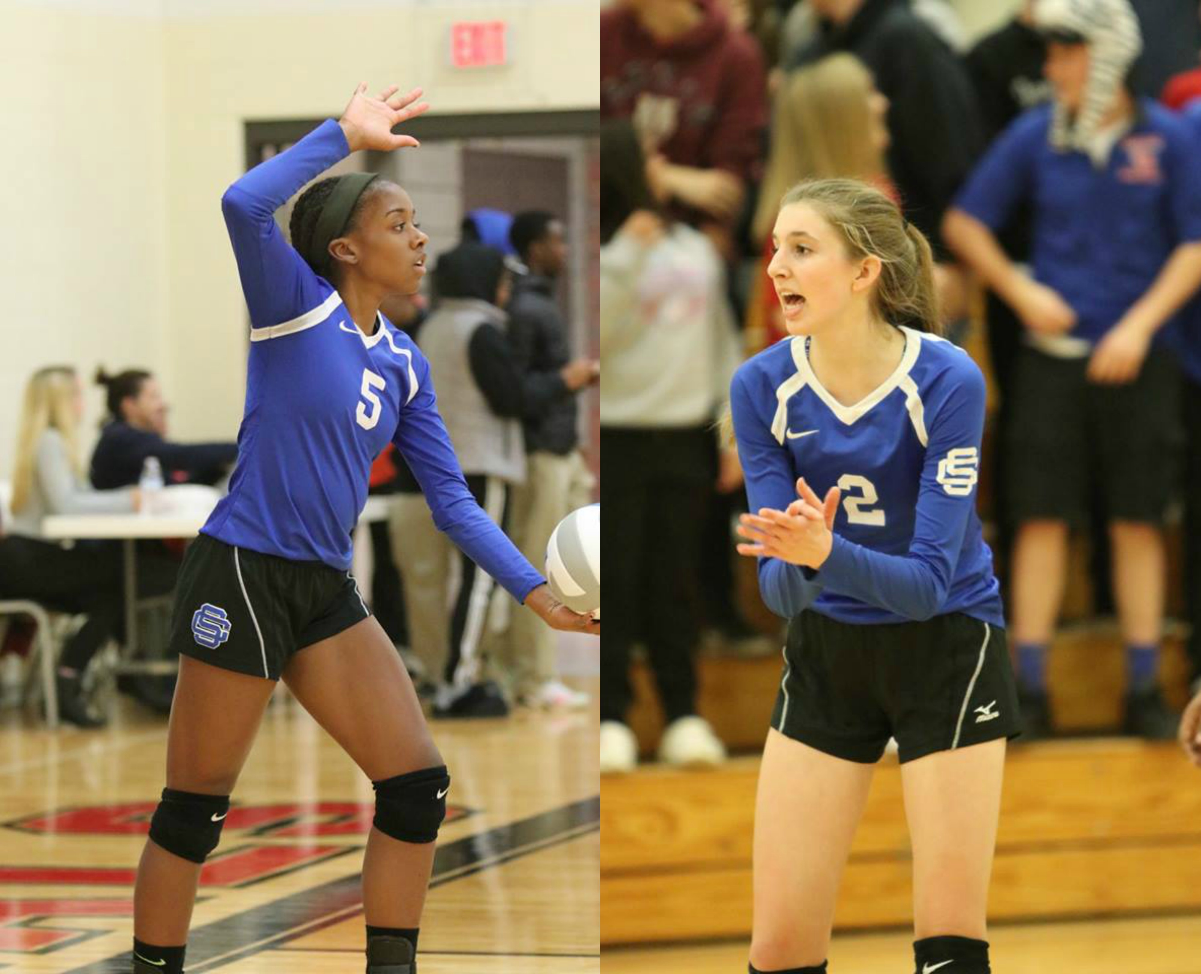 Ray and Van Dyke Earn Volleyball All State Honors