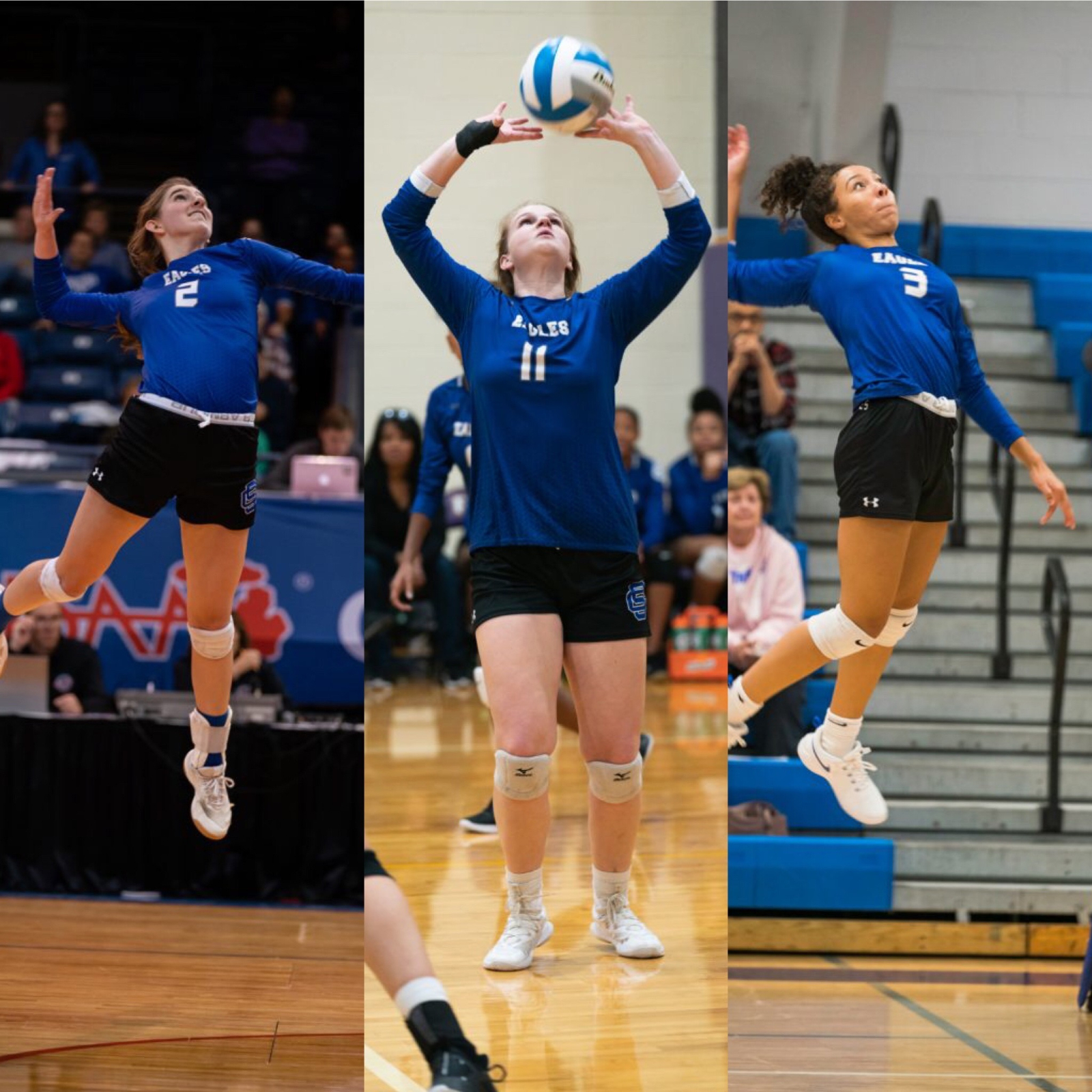 Volleyball Trio Earns All State
