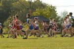 Cross Country Competes in 2nd MIAC Jamboree